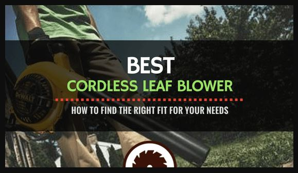 What is Best Cordless Leaf Blower for all Seasons